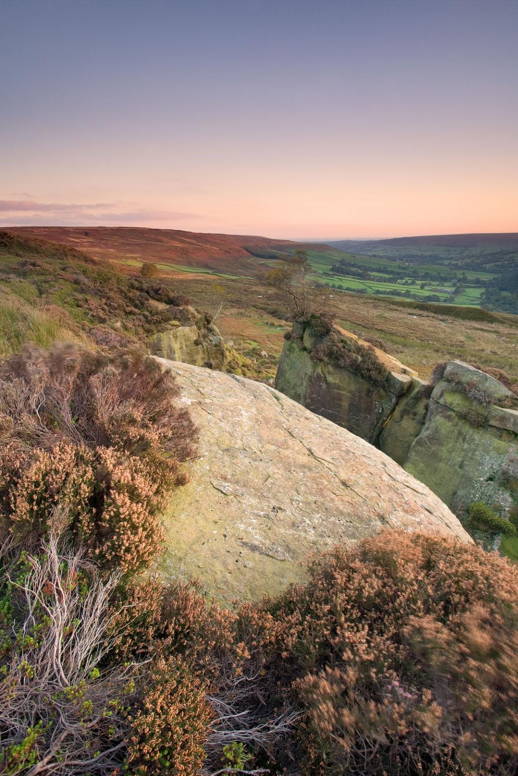 Landscape picture prints of Heather on north Yorkshire Moors - David  Speight Photography